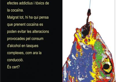 punt 4 cartell catala