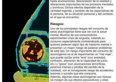 Punto 10 EXPO castellano 6