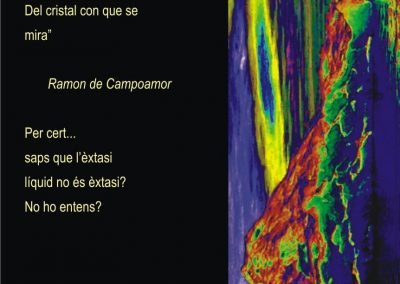 punt 5 cartell catala